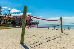 Beach Volleyball | Peppertree Bay