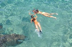 Best Time to Snorkel at Point of Rocks || Peppertree Bay