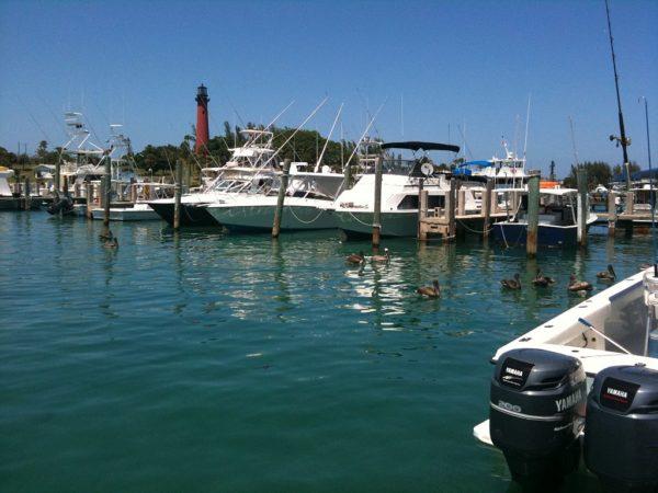 Siesta Key Boat Rentals || Peppertree Bay || Monthly Rentals on Siesta Key