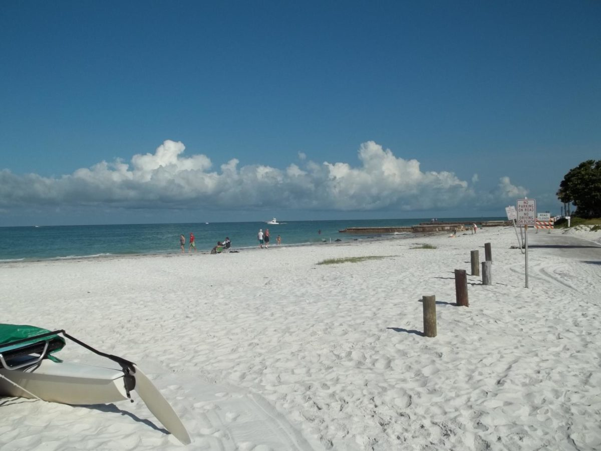 There is a reason why Florida is one of the top travel destinations in the country. Sarasota County is home to some of the best summertime fun in the state.
