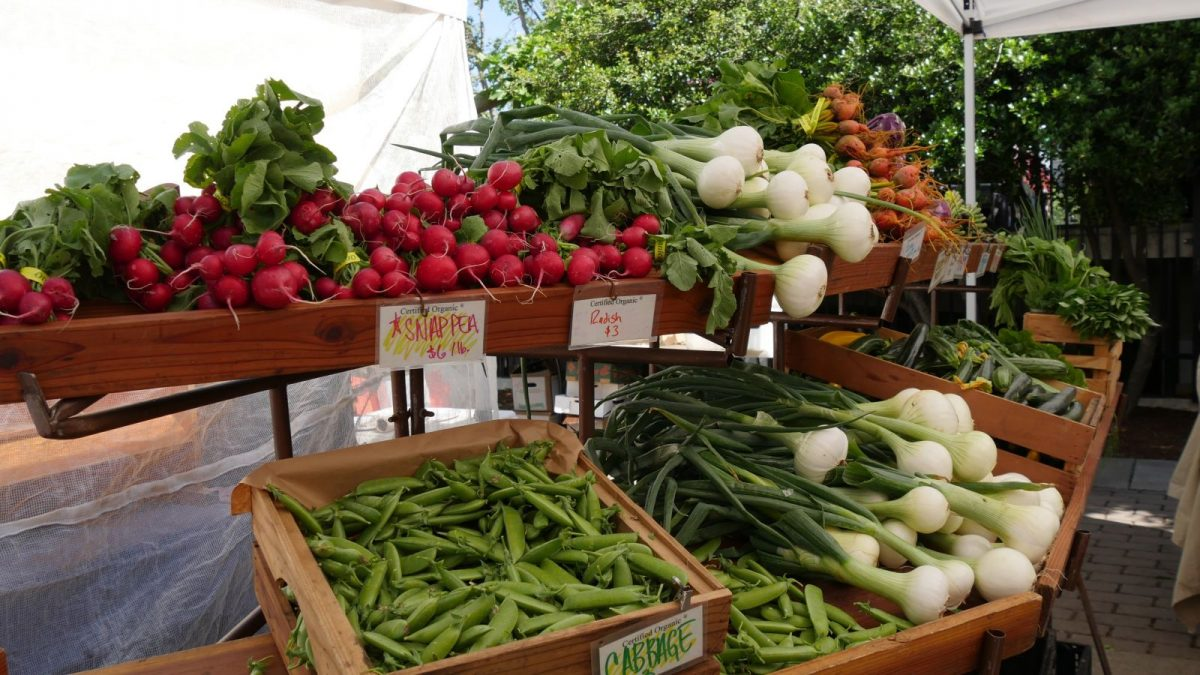 Sarasota Farmer's Market Fresh Produce